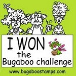 Winner at Bugaboo