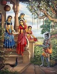 Vrindavana 360 Darshan