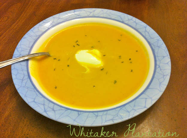 Atlanta Bread Company has some of the best Butternut squash soup I ...