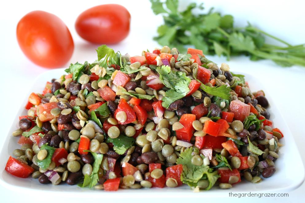 The Garden Grazer50 Awesome Vegan Black Bean Recipes