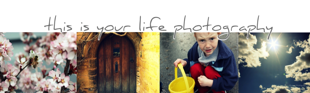 This Is Your Life Photography