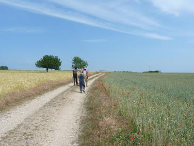 ヴァル・ド・ワーズの麦畑はまるで印象派の風景画
