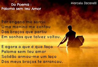 Paloma Sem Teu Amor