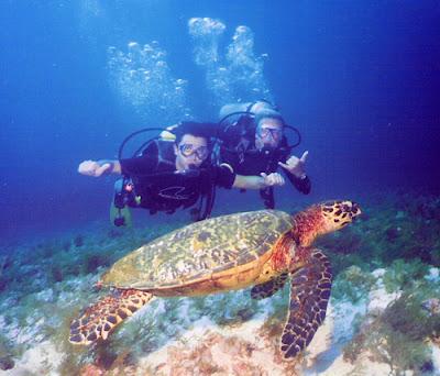 Lặn Biển Cù Lao Chàm