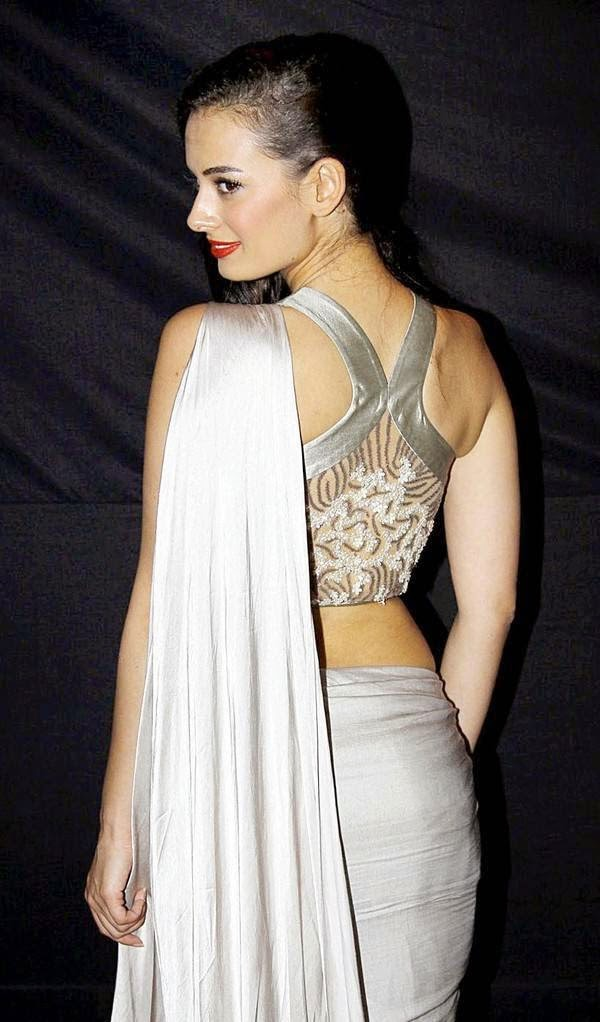 evelyn sharma hot backless hd pics in saree