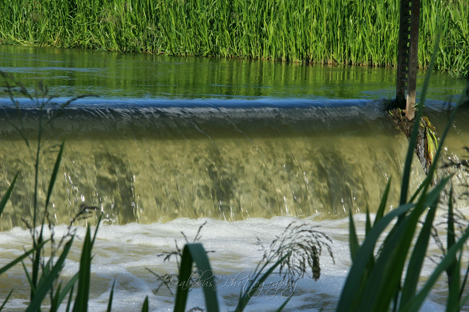 Jez na Chvojnici u Kátova/The Little Weir near by Kátov