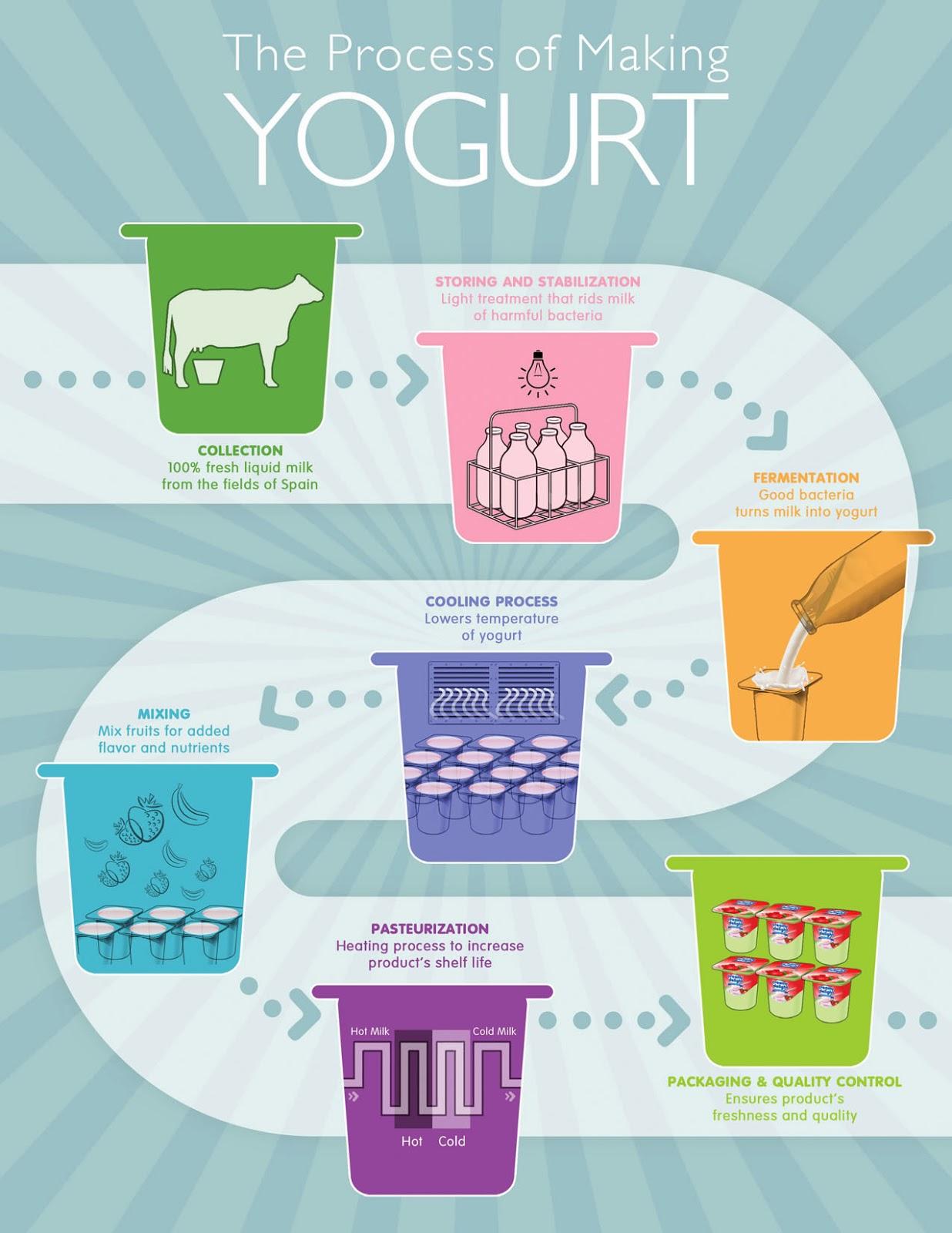 Yogurt production college paper writing service yogurt production ccuart Image collections