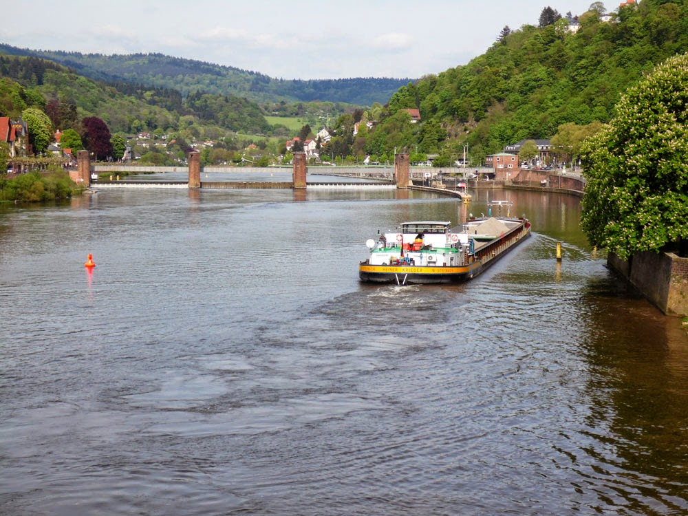River traffic on the River Neckar at Heidelberg, taken by Andie Gilmour