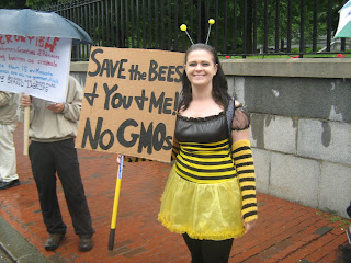 Monsanto, GMOs, Colony Collapse Disorder