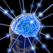 Mempertajam Daya Ingat Otak