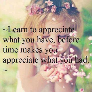 Learn to appreciate what you have, before time makes you appreciate what you had.