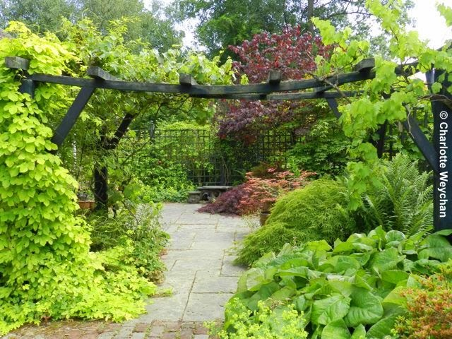 The galloping gardener triangular treasure in essex for Garden designs for triangular gardens