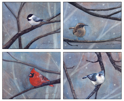 watercolor bird paintings