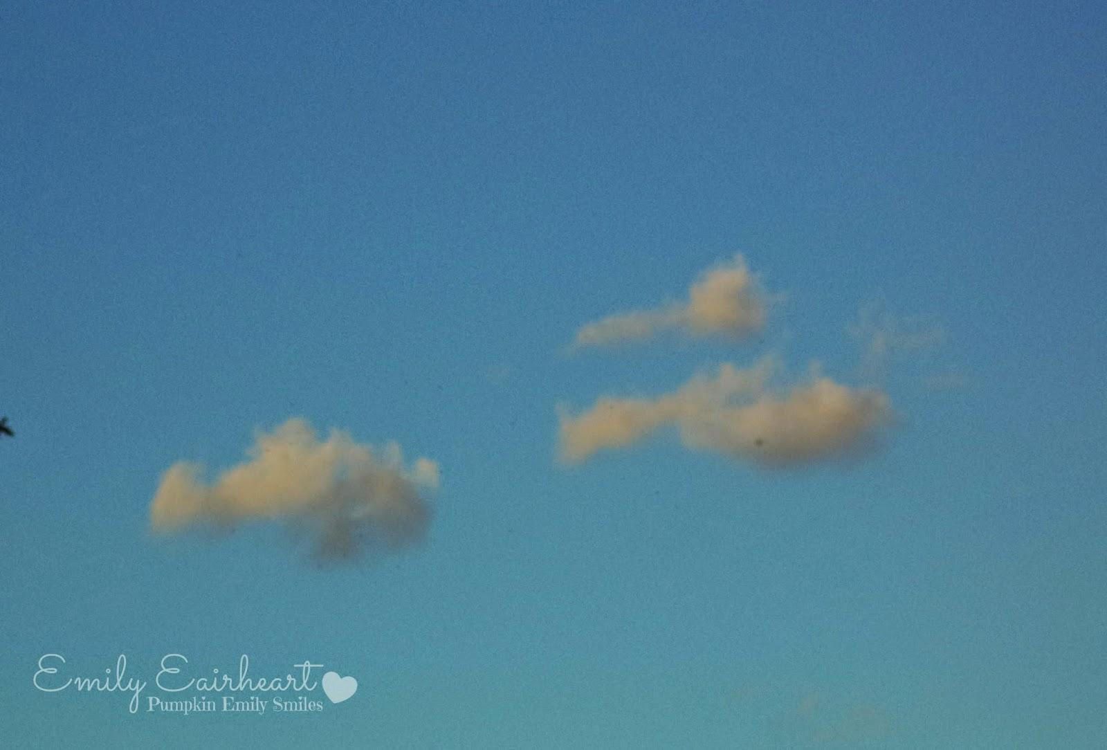 Clouds that look like ducks.
