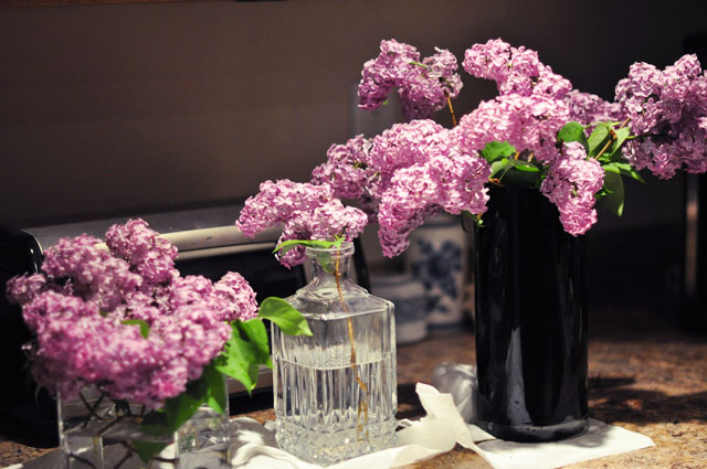 fresh cut lilacs, flowers as decor