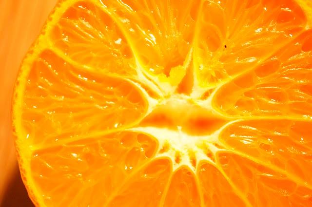 free photo orange