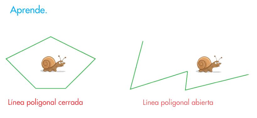 http://www.primerodecarlos.com/SEGUNDO_PRIMARIA/febrero/tema3/actividades/mates/lineas_poligonales_abiertas_cerradas/aprende_linea_poligonal/visor.swf