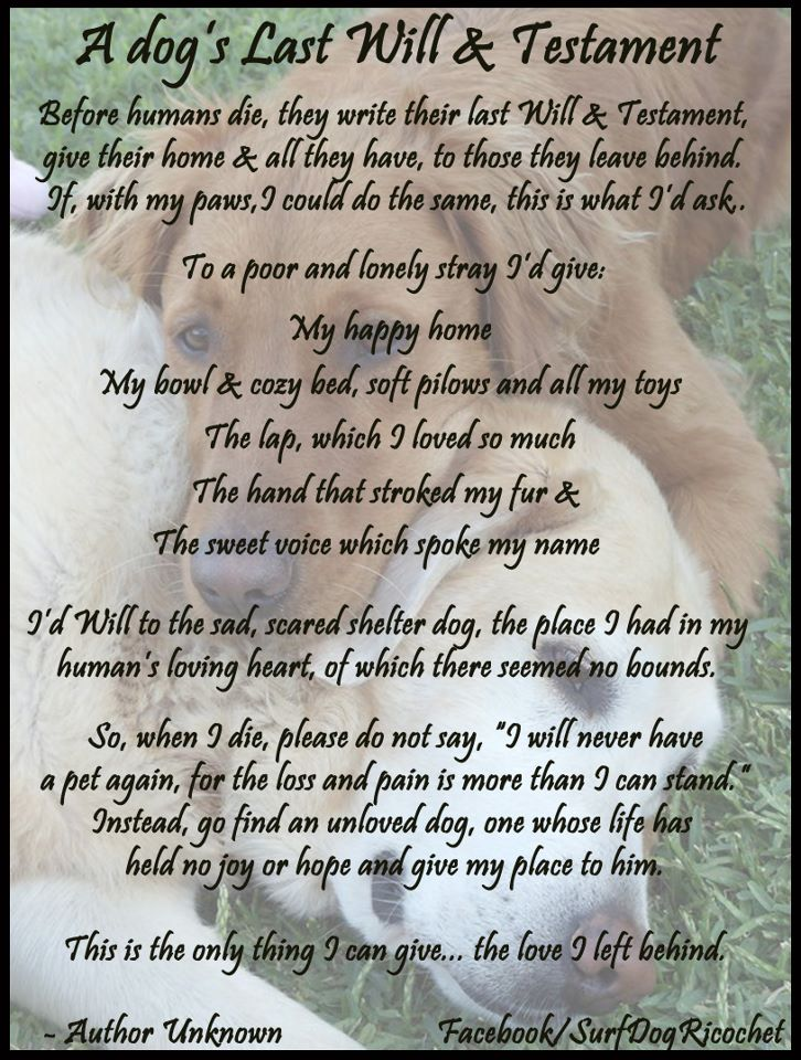 Dogs Last Will And Testament Poem