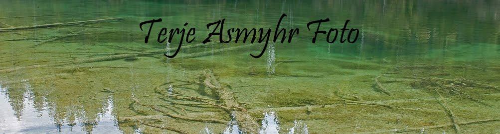 Terje Asmyhr-Foto