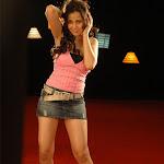 Priyanka Kothari Aka Nisha Kothari   Spicy Photo Gallery