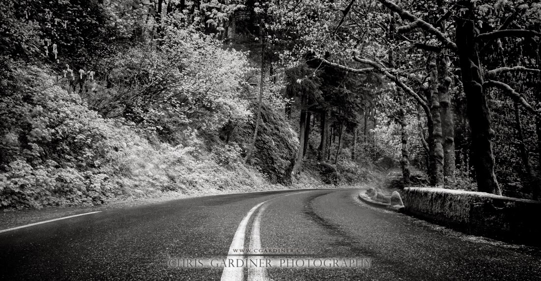 A monochrome black and white image of the historic and scenic Columbia River Highway near multnomah falls, oregon, captured by Chris Gardiner Photography