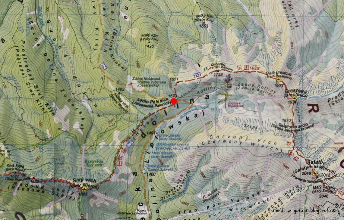 Palenica Jałowiecka na mapie