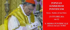 """III PEREGRINATIO EXTRAORDINARIA 2014 --  """"populus Summorum Pontificum"""" coi Card. Burke e Pell"""