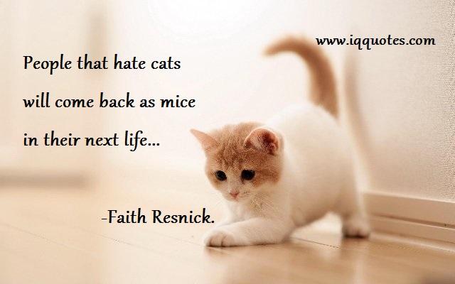 Cat Karma