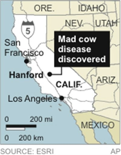 A brief history of bovine spongiform encephalopathy bse or mad cow disease