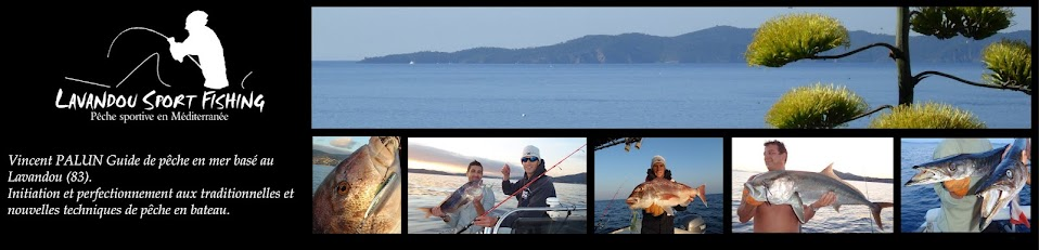 Lavandou Sport Fishing