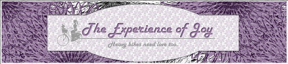 The Experience of Joy