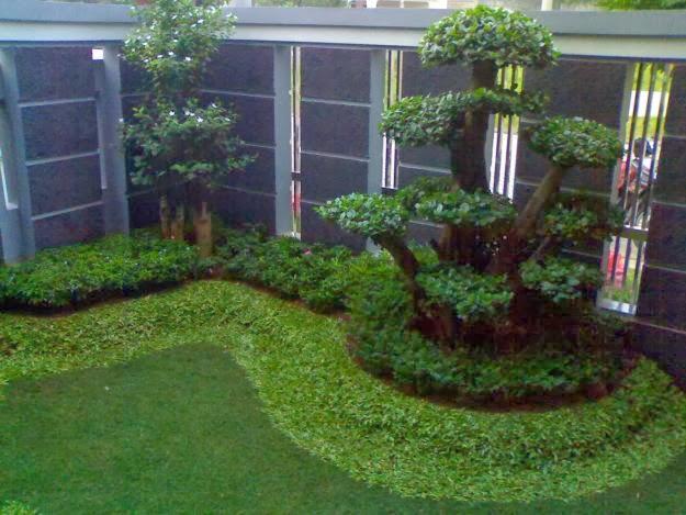 tukang taman minimalis jasa pembuatan taman renovasi taman