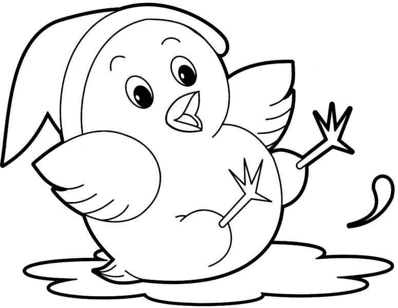 Rayito de Colores: Pollos