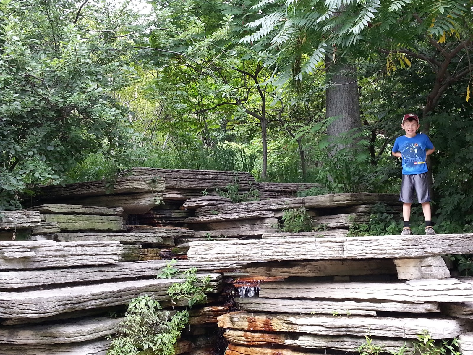 The Chicago Real Estate Local Free Kids Fun Sculpture Spelunking And Giraffe Calling In