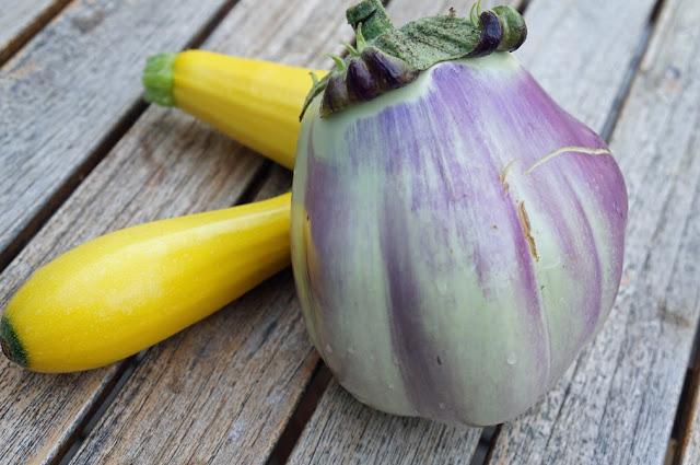 aubergine prosperosa