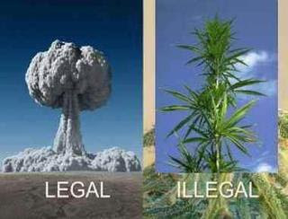 legal ~ illegal ..