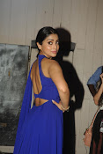 Actress Shriya Stills at LFW Winter Festive 2015-thumbnail-5