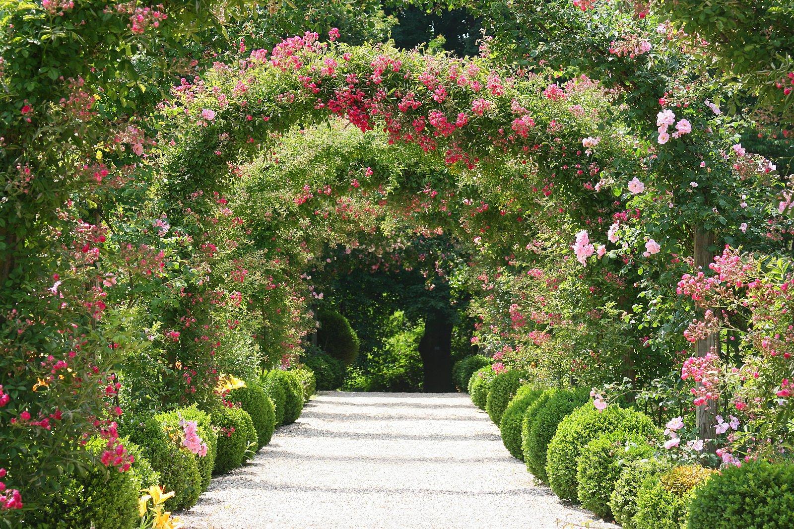 3 boyutlu duvar ka tlar for Good garden design
