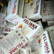 Felinna Vit C RM85+POST
