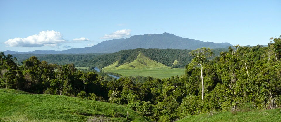 Daintree Valley Haven