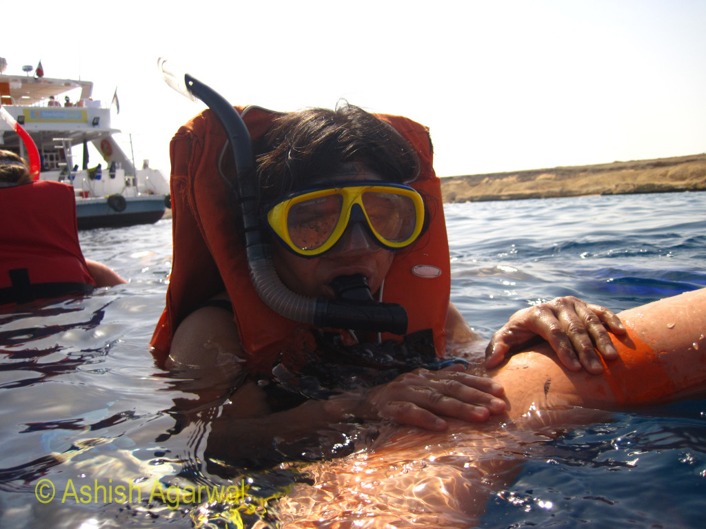 Person wearing snorkeling gear and holding onto a tube for floating purposes