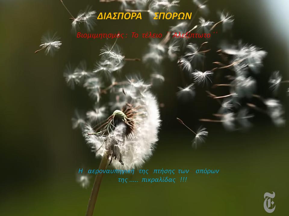 """""""Διασπορά Σπόρων"""" - Άγγελος Αντωνέλλης"""