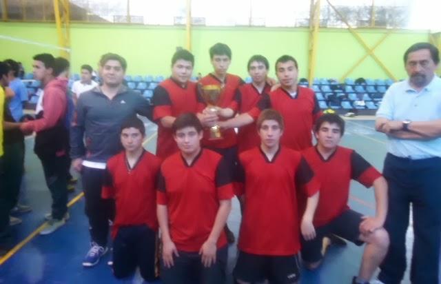 Logros en Provincial de Voleibol 2013