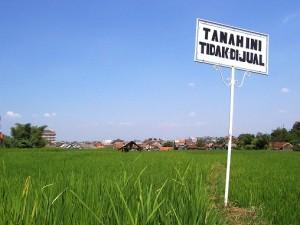Kasus Sengketa Tanah Yang Tak Kunjung Terselesaikan