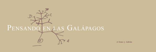 Pensando en las Galápagos