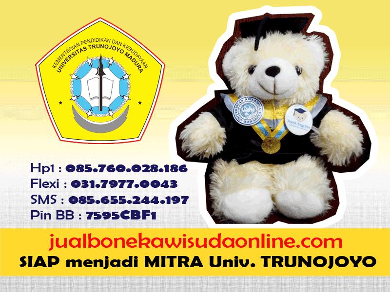 Boneka Wisuda UNTRU | Jual Boneka Wisuda Universitas Trunojoyo