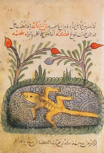 كتاب لله ثم للتاريخ