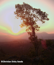 Senja di Gunung Mollo