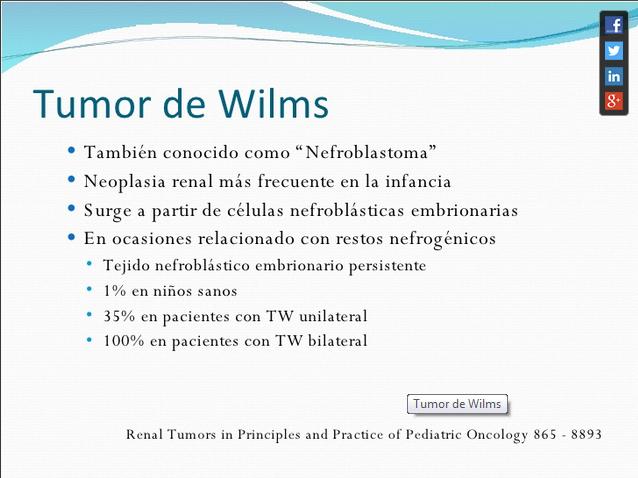 testicular steroidogenesis definition