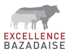 Excellence Bazadaise